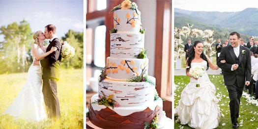 Mountain wedding - Granby, Vermont, California