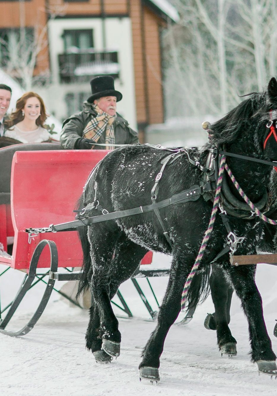 A Winter Styled Shoot with a Sleigh in Idaho