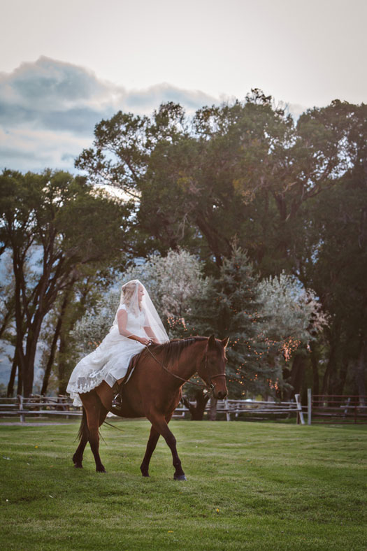 Wedding: Made in Montana