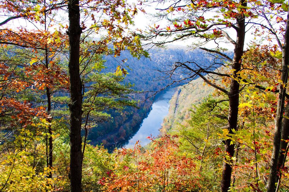 An Autumn Wedding in West Virginia