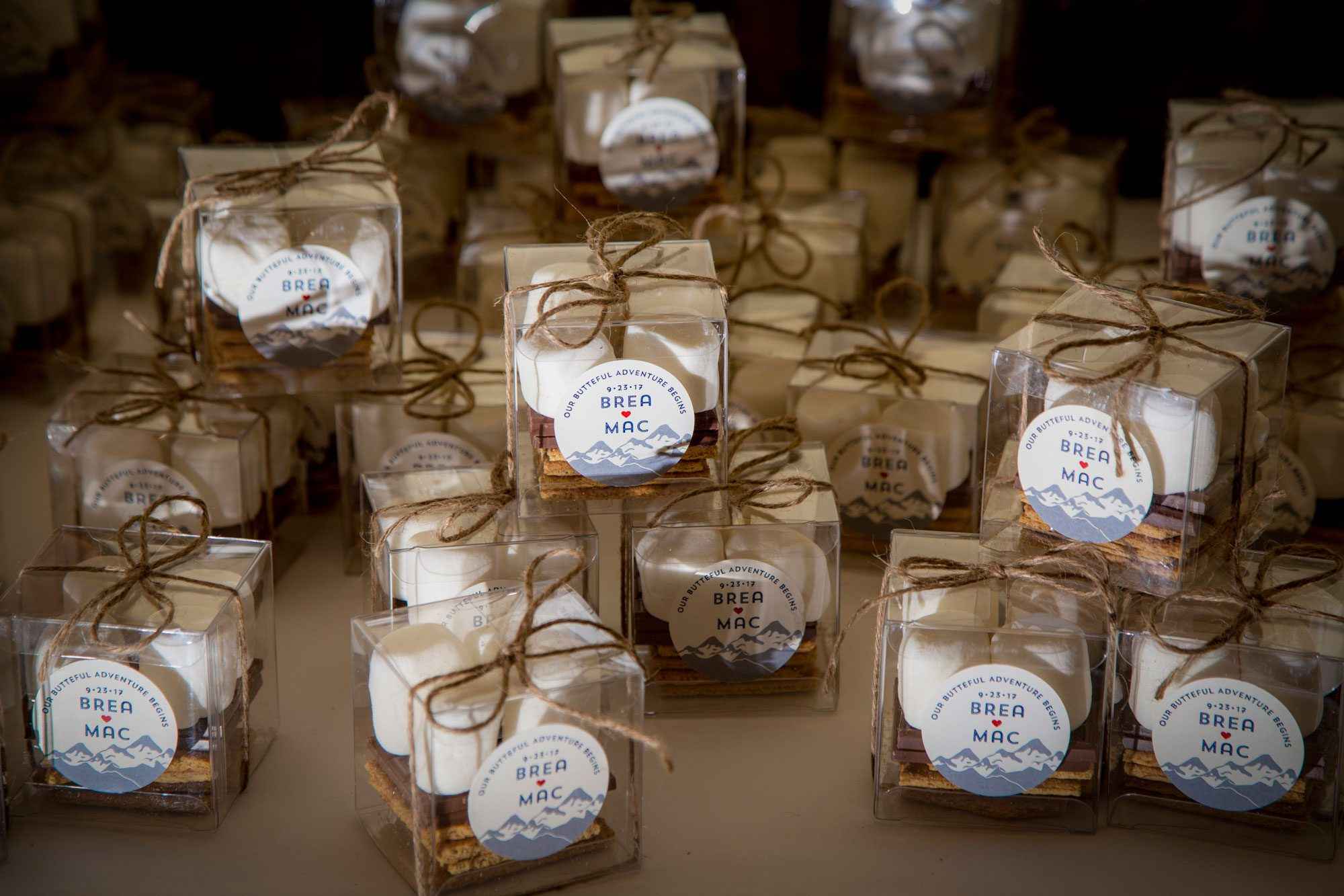 DIY S'more favors