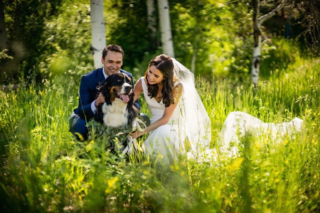 Bride & Groom with dog | Beaver Creek, Colorado Wedding