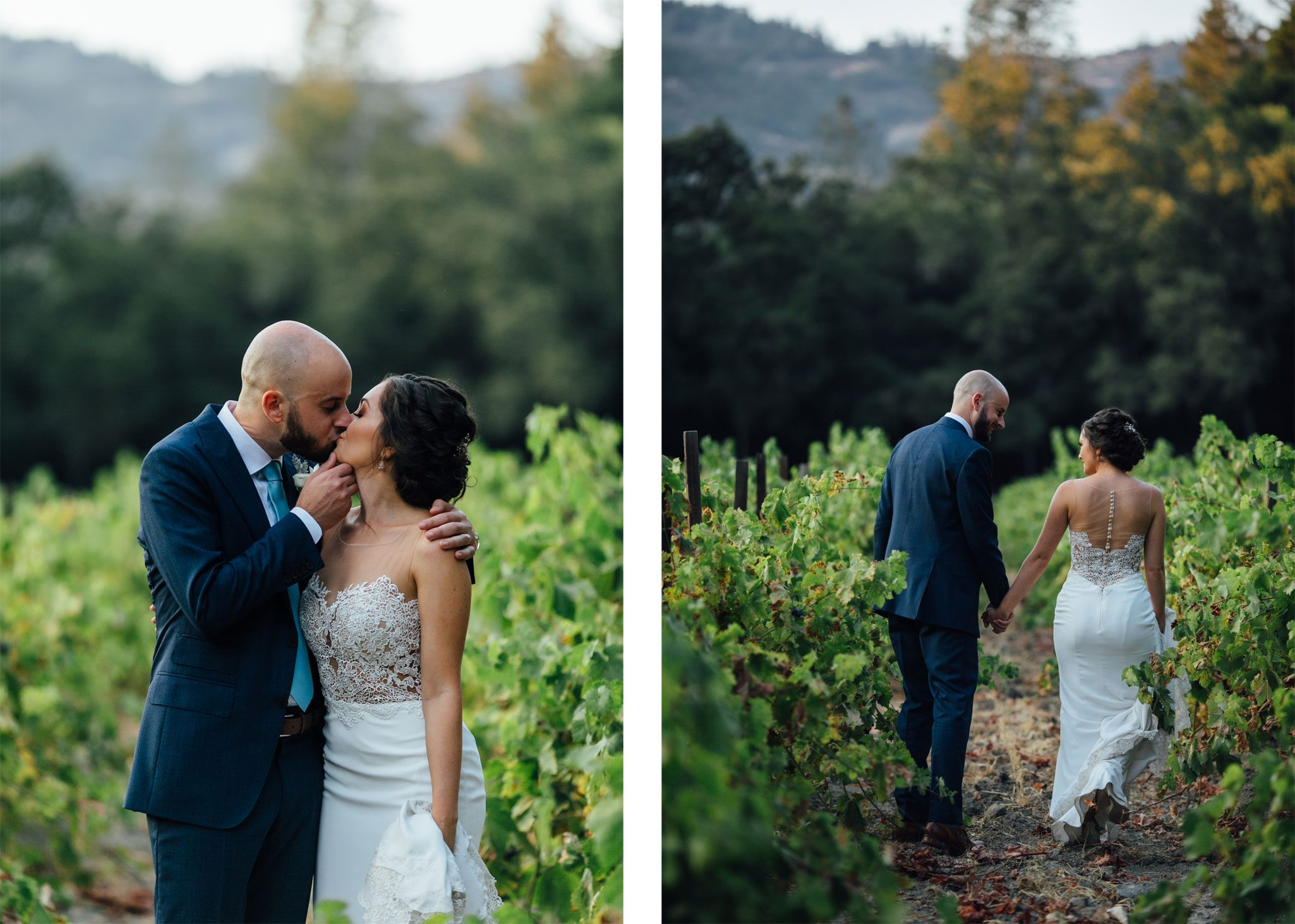 Bride and groom kiss in a Napa Valley vineyard